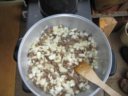stir-in-onions